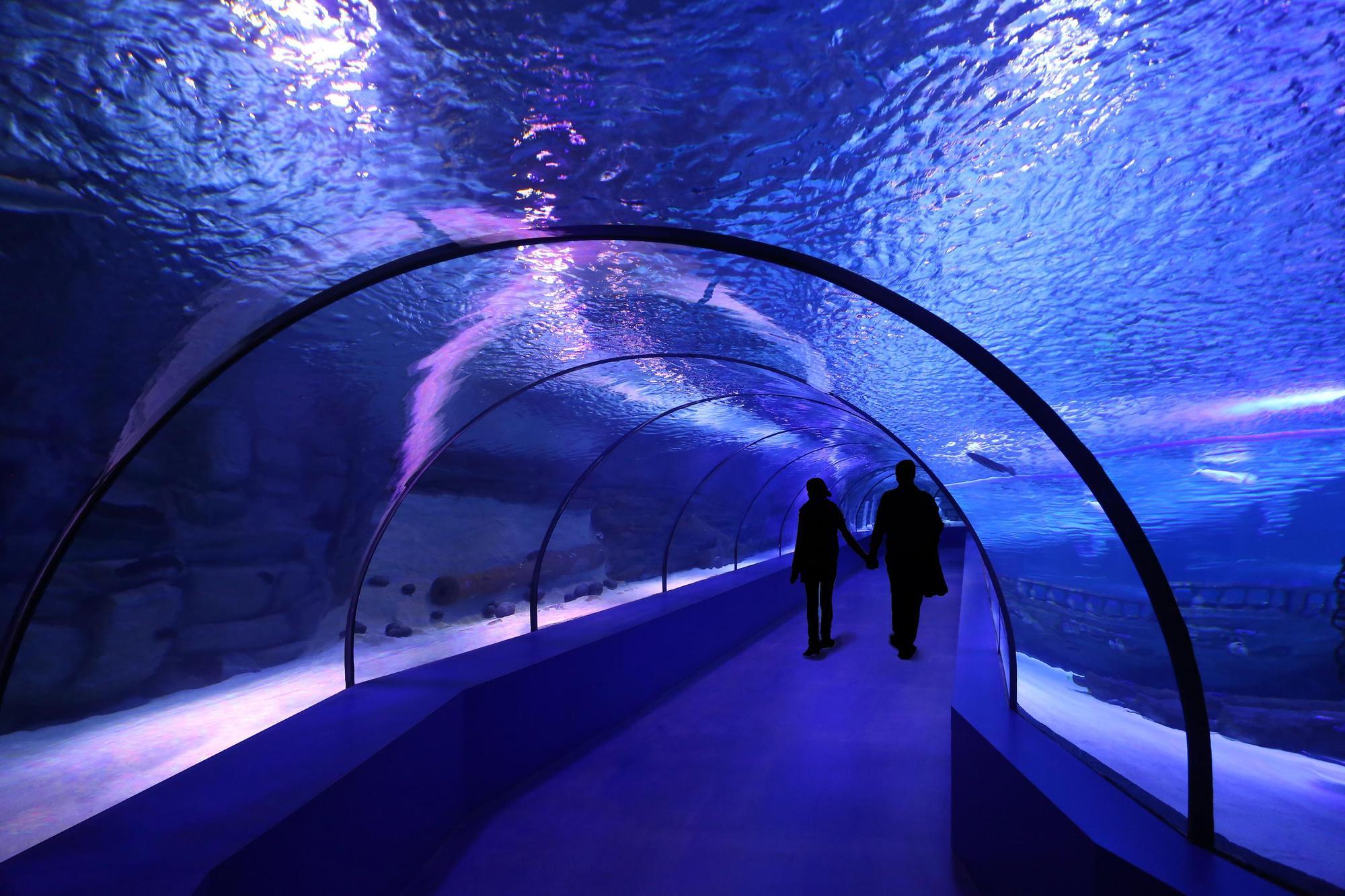 Aquarium Antalya - Catt Tour Antalya